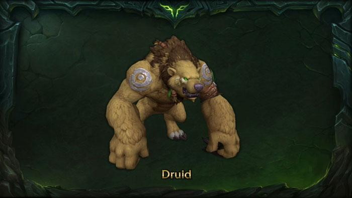 Druid Wearbear Form